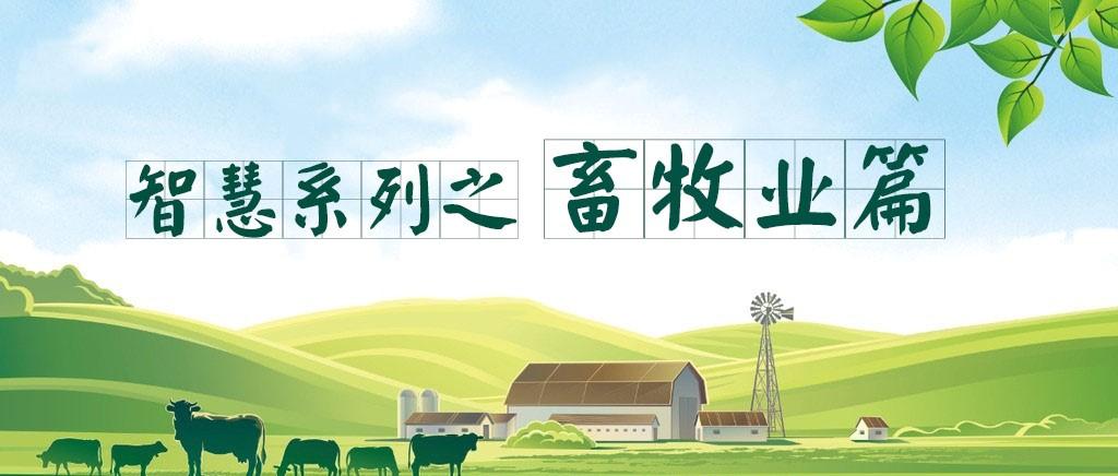 农业发展纪实:OA系统为现代畜牧业添翅膀