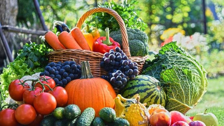 华天动力协同OA系统攻破农产品零售行业难题